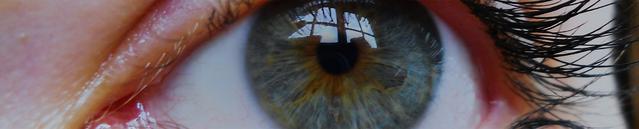 Vista ravvicinata di un occhio di colore azzurro
