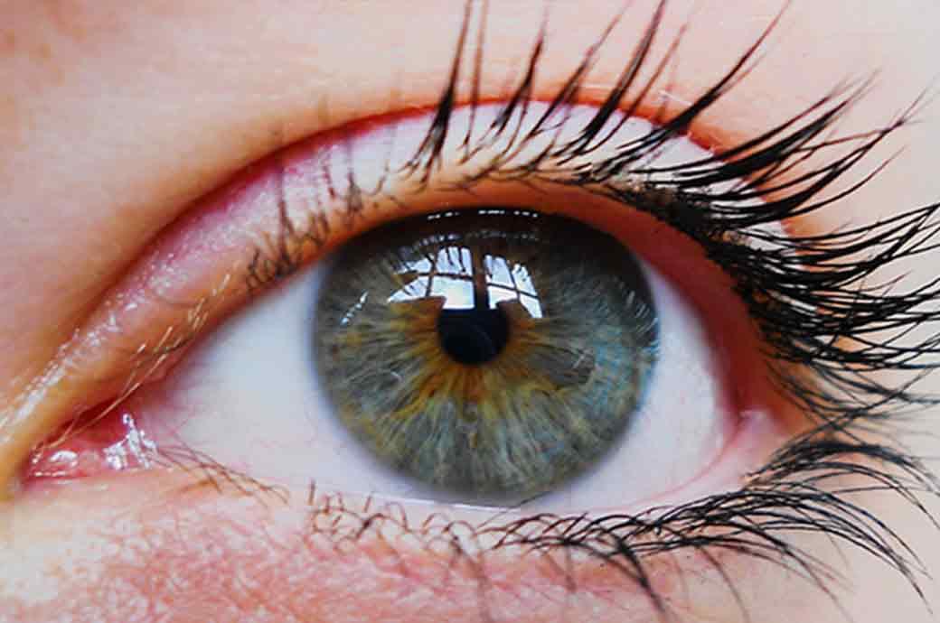 Una donna giovane dietro un foroptero mentre l'ottico effettua un controllo dei suoi occhi durante un'esame